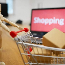 preview of the Online E-Commerce Course
